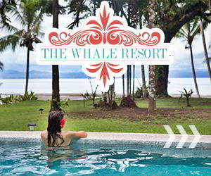 The Whale Resort Villas for Rent